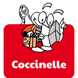 bouton coccinelle.png